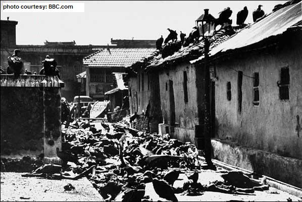Aftermath of Indian Partition and ensuing mass migration