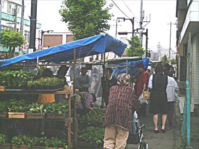 market day060613c