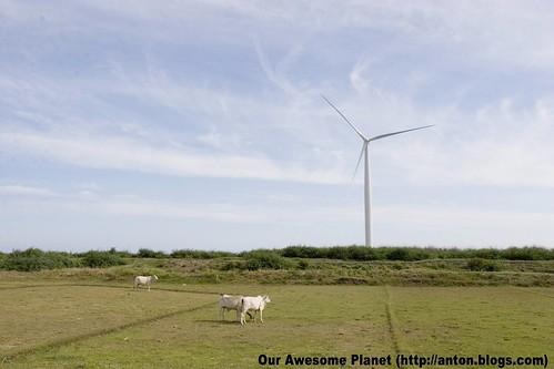 Bangui Windmills -001.jpg