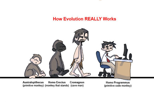 evolution of programmers