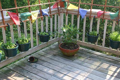 Deck Garden (7-1-06) - 1 -