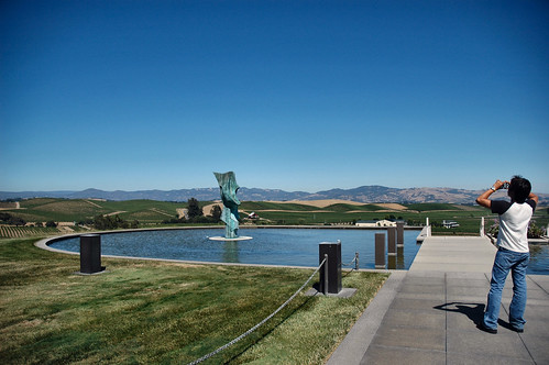 Artesa Winery, Napa