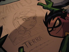 Terra and Robin