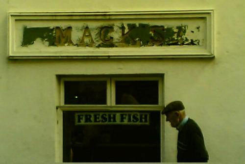 mackens fish