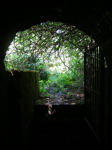 Ice House Entrance - Looking Out