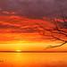 Coucher de soleil sur le Lac Champlain, Sunset on Lake Champlain