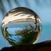 Caribbean Beach through the Sphere