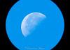 48771890046_3e5f964b35_t