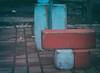 48835380921_c248ae3289_t