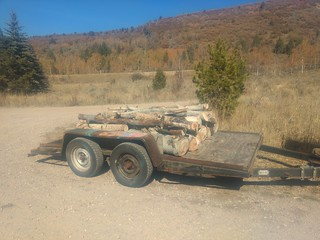Trailer with wood