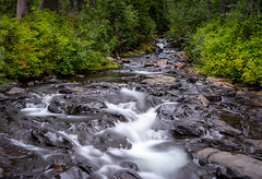 Paradise River above Narada Falls