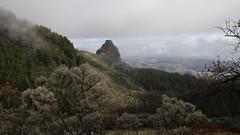 View to Roque Jincao. Gran Canaria. AA8A5077