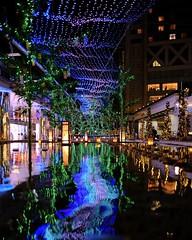Tanabata Theme at Tokyo Dome (Winter Light Festival)