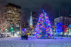 Boston Common Tree Lighting 2019