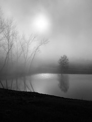 In the mist...