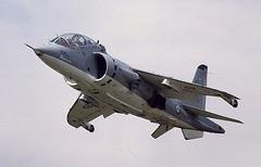 Harrier T.50
