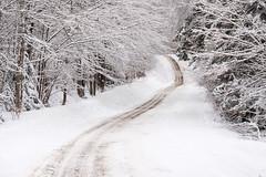 Un samedi de neige