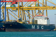 MSC PEGGY - IMO 8208672