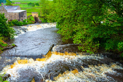 Dales & Waterfalls @ Bainbridge (river ure) Explored)