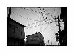 Mogi - Kyushu