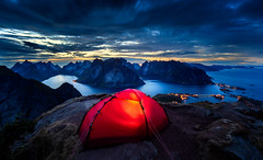 Good Night Lofoten