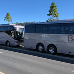 Bayes Coaches street side