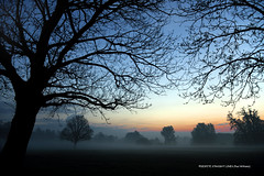 This Mist covered solitariness  -  (Published by GETTY IMAGES)  &  (Selected for FLICKR EXPLORE)