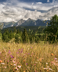 Summer in Tatra Moutains