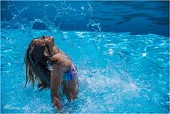 Los juegos del agua. Explore 2/junio/2020