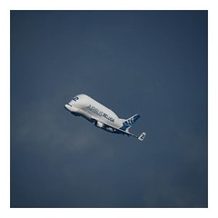 The Airbus