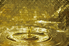 Splash - Golden
