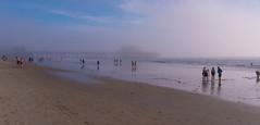 Santa Monica Beach 🌠