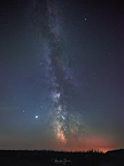 August Milkyway