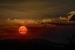 An Enigmatic Sun