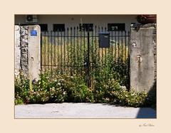 The Gate, das Tor / explore 13.08.2020
