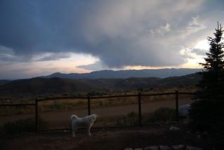 Mavis at work and a cloud