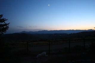 Mavis and the moon
