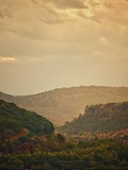 Autumn days, in the mountains of Pennsylvania