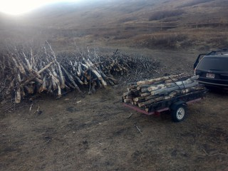 More Firewood