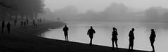 Misty River (monochrome)