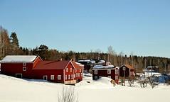 Vinter i Hälsingland 21.