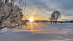 Winterlandschaft Unterthingau Germany  Bayern