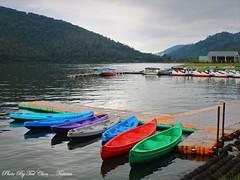 Liyu Carp Lake 鯉魚潭