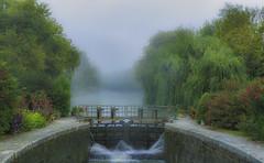 France_fog