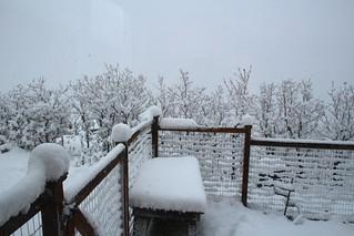 March 20 snow