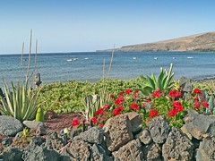 Espagne, les Canaries, l'île de Lanzarote, la Playa Quemada