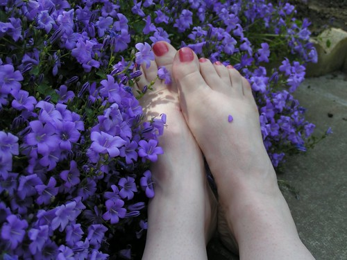 flowertoes