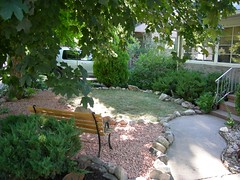 Front yard, after #2