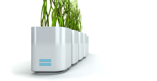 Herbi, Hydrophonic, Indoor Gardening, LEDs, Green Design, Botanical Design, Indoor Herb Growing