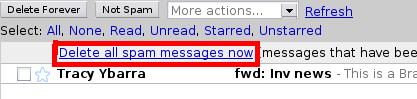 Gmail Delete All Spam